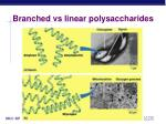 branched vs linear polysaccharides