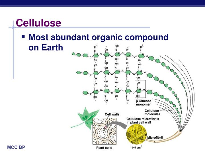 Cellulose