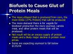 biofuels to cause glut of protein meals