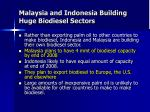 malaysia and indonesia building huge biodiesel sectors