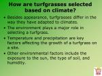 how are turfgrasses selected based on climate