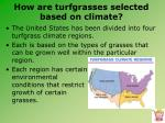 how are turfgrasses selected based on climate1