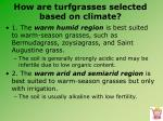 how are turfgrasses selected based on climate2
