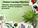 student learning objectives1