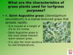 what are the characteristics of grass plants used for turfgrass purposes9