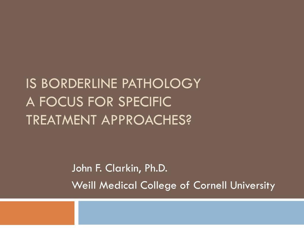 is borderline pathology a focus for specific treatment approaches l.