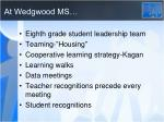 at wedgwood ms2