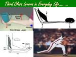 third class levers in everyday life