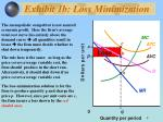 exhibit 1b loss minimization