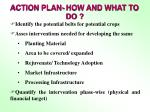 action plan how and what to do