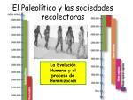 el paleol tico y las sociedades recolectoras