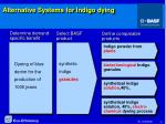 alternative systems for indigo dying