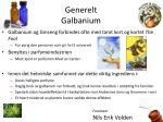 generelt galbanium1
