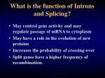 what is the function of introns and splicing