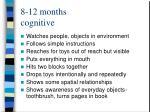 8 12 months cognitive