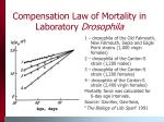 compensation law of mortality in laboratory drosophila