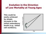 evolution in the direction of low mortality at young ages