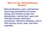 bees for life world apitherapy network2