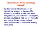 bees for life world apitherapy network3