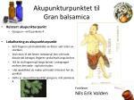 akupunkturpunktet til gran balsamica