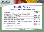 the big picture products exported to canada 2010