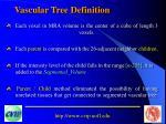 vascular tree definition