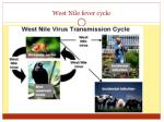 west nile fever cycle