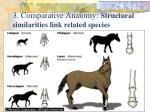 3 comparative anatomy structural similarities link related species