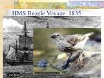 hms beagle voyage 1835