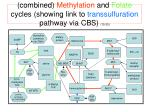 combined methylation and folate cycles showing link to transsulfuration pathway via cbs 15 20