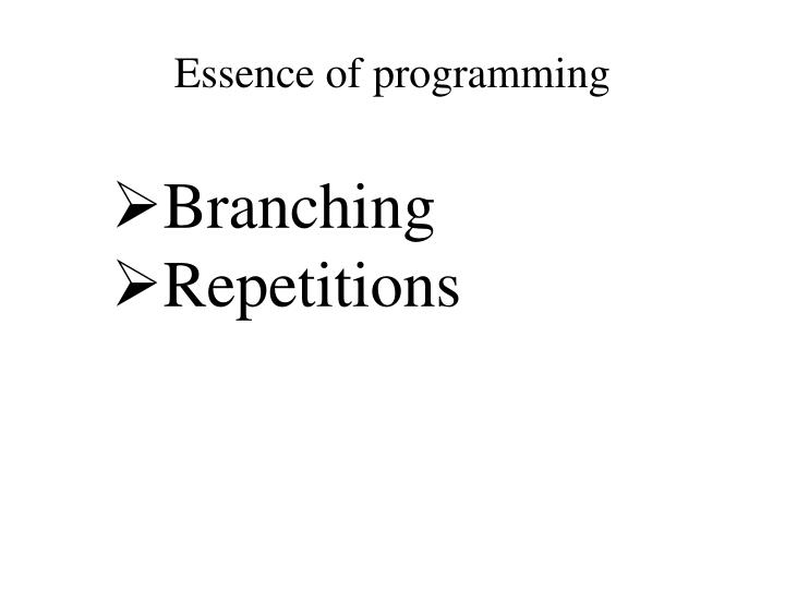 essence of programming n.