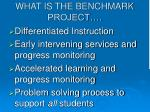 what is the benchmark project