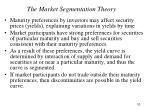 the market segmentation theory