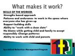what makes it work1