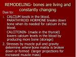 remodeling bones are living and constantly changing