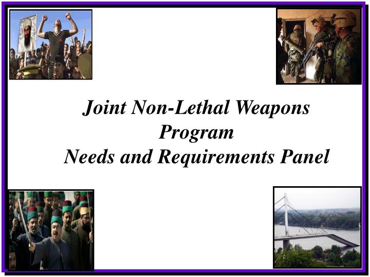 Joint Non-Lethal Weapons Program
