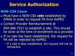 service authorization1