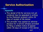 service authorization8