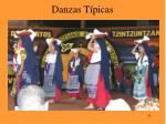 danzas t picas23