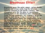 greenhouse effect1