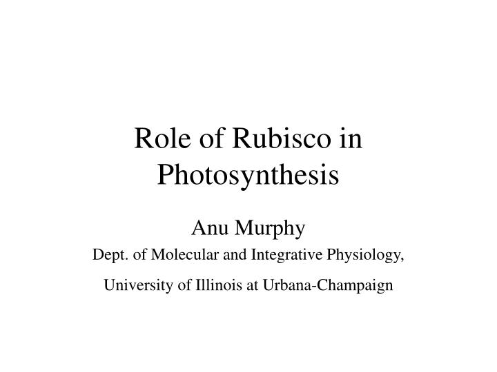 role of rubisco in photosynthesis n.