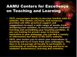 aamu centers for excellence on teaching and learning20