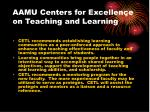 aamu centers for excellence on teaching and learning21