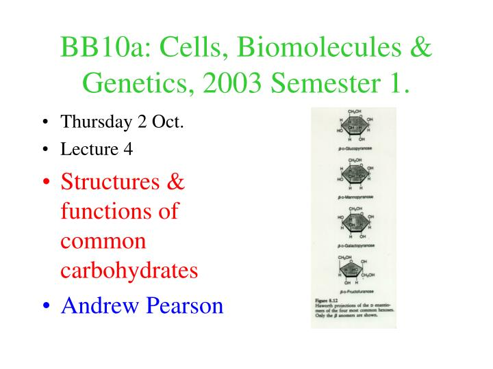 bb10a cells biomolecules genetics 2003 semester 1 n.