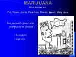 marijuana also known as pot grass joints roaches reefer weed mary jane