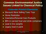 common environmental justice issues linked to chemical policy2