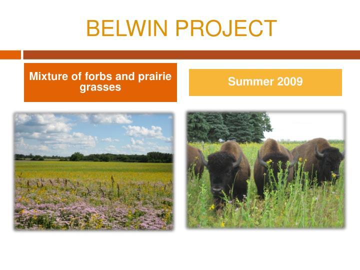 BELWIN PROJECT