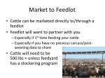 market to feedlot