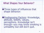 what shapes your behavior