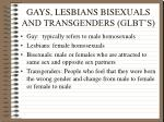 gays lesbians bisexuals and transgenders glbt s